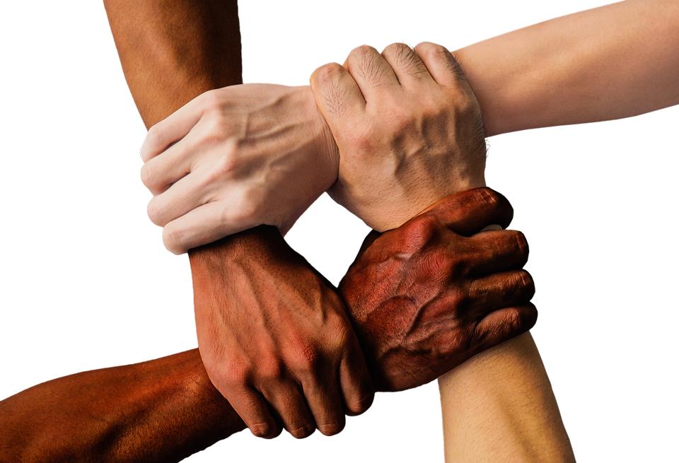 L'EVOLUCIÓ DEL RACISME